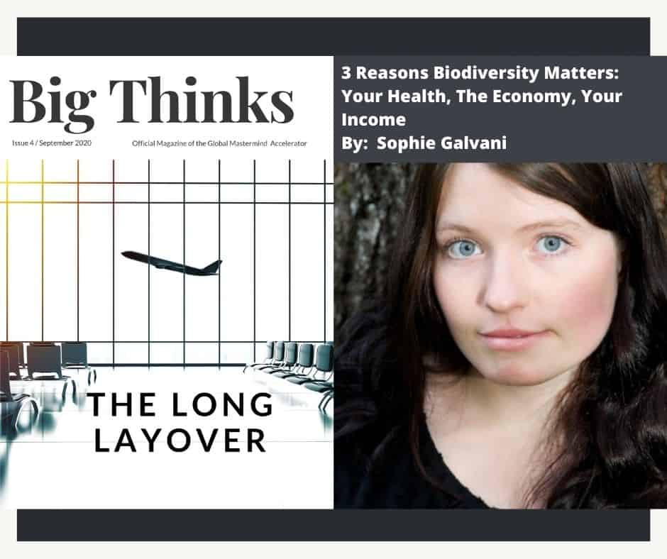 Big Thinks September 2020. 3 Reasons Biodiversity Matters: Your Health, The Economy, Your Income